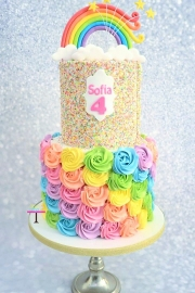 2 laags rainbowcake